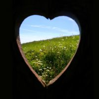 Love. Nature. by Lilliendahl