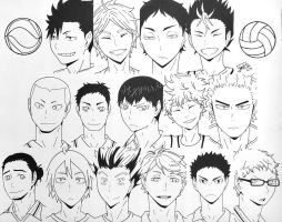 Haikyuu!! Collage by step-on-mee
