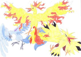 The three legend birds by Wilira