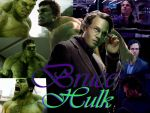 Bruce Banner/Hulk by MsWillow999