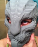 Repti-cat mask first cast by missmonster