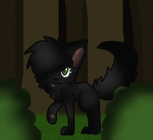 Hollyleaf by BlossomTehKat