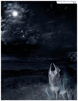 White wolf in shade by Kuja-Trance