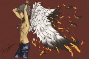 burning wings by akosikeith