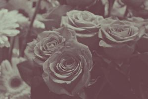 Vintage Roses by maxuela