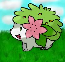 Shaymin by LugiaLuvr13