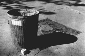 Garbage Can is Home by implodedvoice