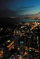 Toronto Night by mousekumouse