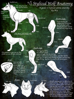.Stylized Wolf Anatomy Guide. by desertfox04