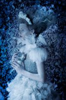 'The Secret Garden' Ice Queen: The First Frost by DmajicPhotography
