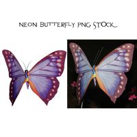 Neon Butterfly PNG STOCK1 by KarahRobinson-Art