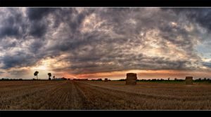 Fields HDR Pan by Dreammastr