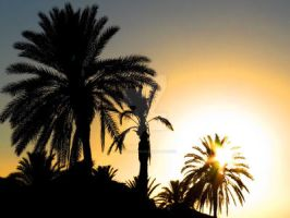 tunisian sunset by Wilithin by Scapes-club