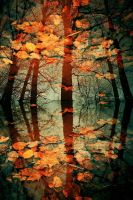 Autumn Leaves by Eredel