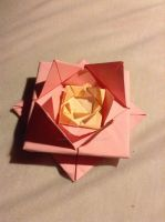 Origami lotus by Black8blood8YoLo