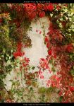 Autumn Vines BG 01 by ALP-Stock