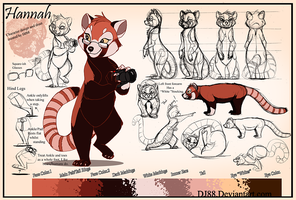 Hannah Character Sheet commission by DJ88