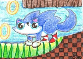 Funny cat aceo funny cat is sonic the hedgehog by KingZoidLord