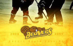 Beavers 2008-09 Wallpaper by PWG44