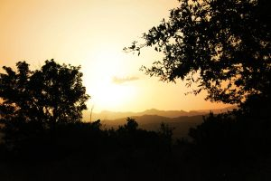 France Sunset by Hankins
