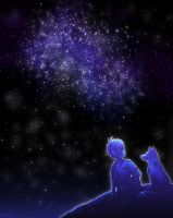 with the fox under the stars by SuperMisurino
