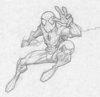 spidey by RyanOttley
