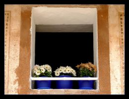 Under The Window - Mallorca by skarzynscy