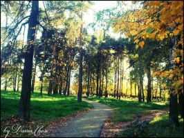 Park. early autumn by DarraChese