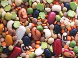 beans by melame