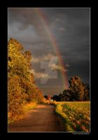 Through the Rainbow by grugster