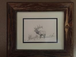 Elk Sketch by TheWestIsNotDead
