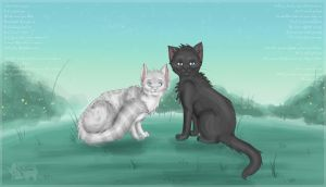 CE : Crowpaw x Feathertail - Falling Slowly by Annalei