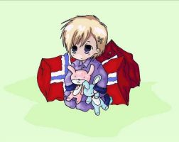 Norway, pillows and bunnies by Bazylyk19