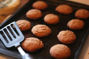 Gingersnaps by livelaughlove816