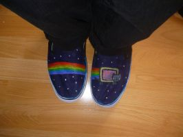 Nyan Cat shoes by Lopaki