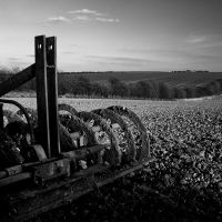 The Plough by Phil-Norton