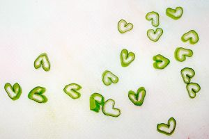 Green Onion Hearts by UrsulaPatch