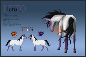 Leto Reference Sheet by Collie-studios