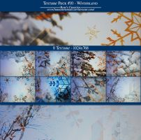 Texture Pack #10 Winterland by dreamswoman