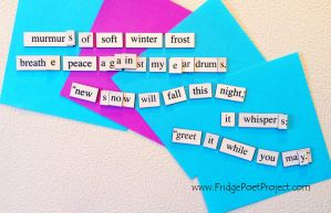 The Daily Magnet #216 by FridgePoetProject