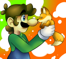 Fox and Luigi by raygirl12