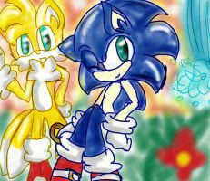 Sonic And Tails by The-Pink-Green-Chibi