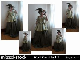 Witch Court Pack 1 by mizzd-stock