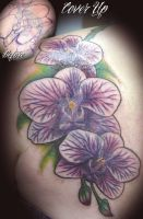 Orchid Coverup by n1cKYveysey