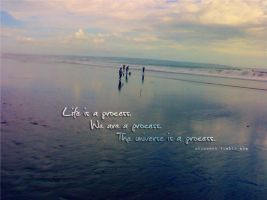 Life is PROCESS by SanAeRi
