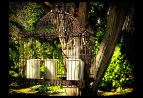 Jasmine Hill Gardens06 by sees2moons