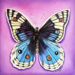 Butterfly gift 2 by SamanthaJordaan