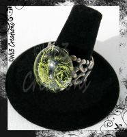 Monster Mash Ring by kelleejm1