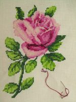 Pink rose cross stitch by Santian69