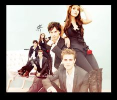 The vampire diaries by fayres12